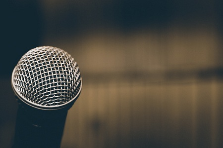 Ses Eğitimi